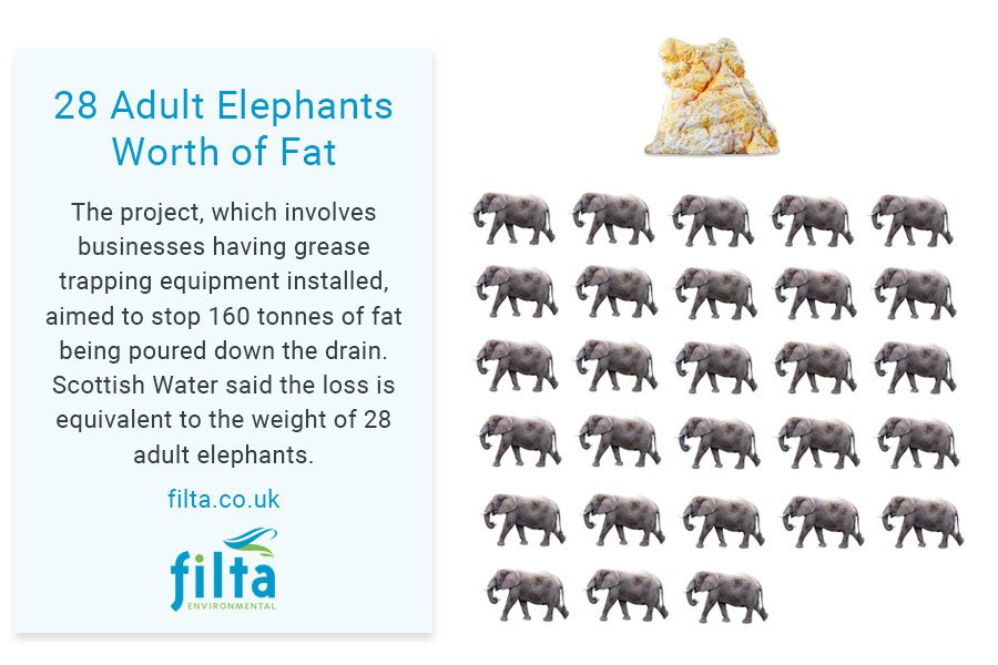 28 Elephants Worth of Fat - Filta Environmental - UK