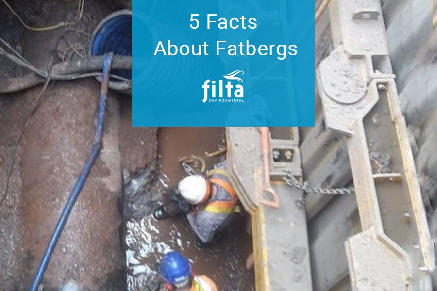 5 Facts About Fatberg - Sewer Blockage UK - Filta Environmental